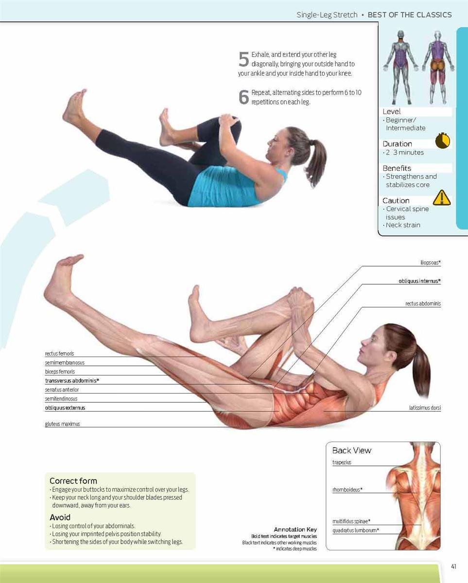 pilates anatomy a comprehensive guide pdf