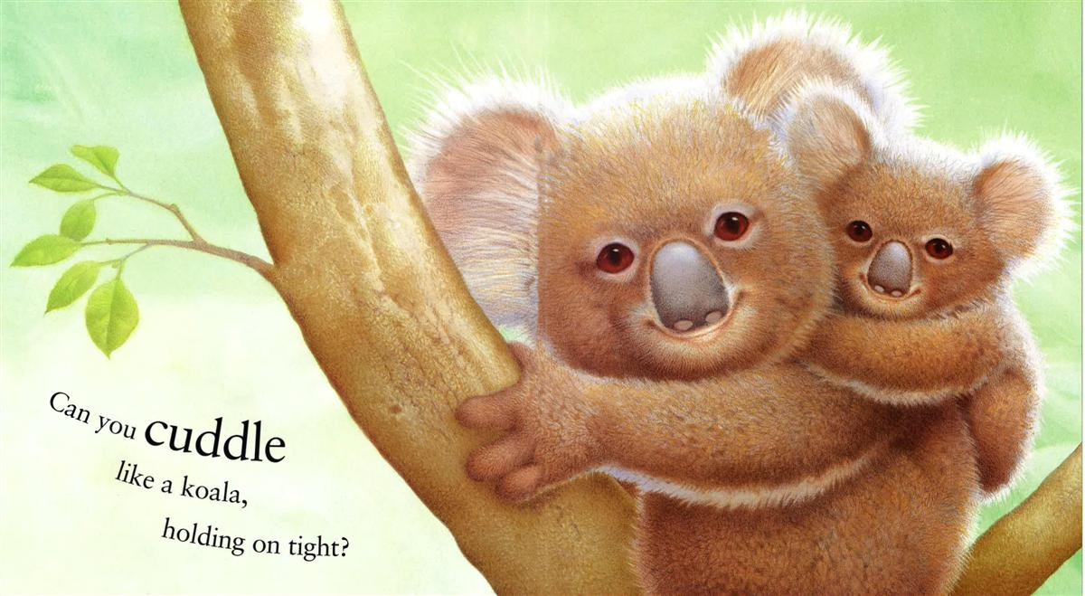 Can I Cuddle With You: Can You Cuddle Like A Koala?, Orchard Red
