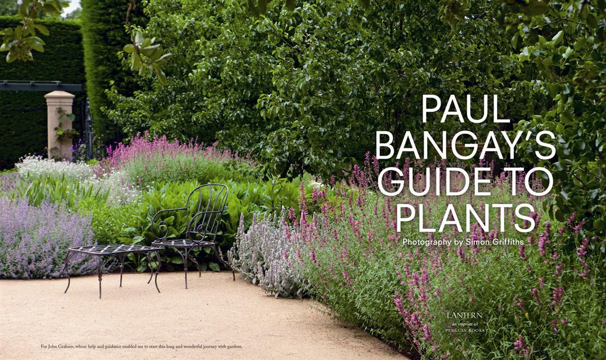 Booktopia - Paul Bangay's Guide to Plants by Paul Bangay ...