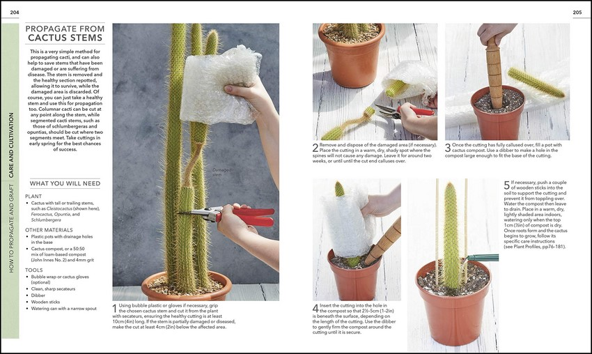 RHS Practical Cactus and Succulent Book, How to Choose