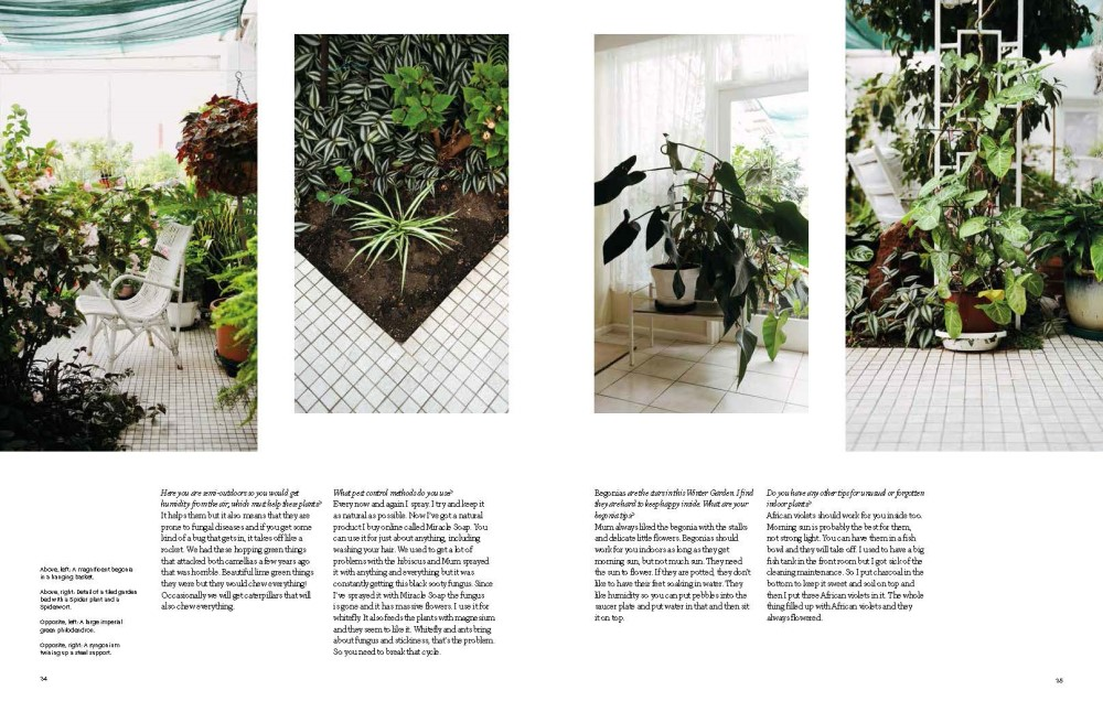 Indoor Green Living With Plants By Bree Claffey 9780500500538