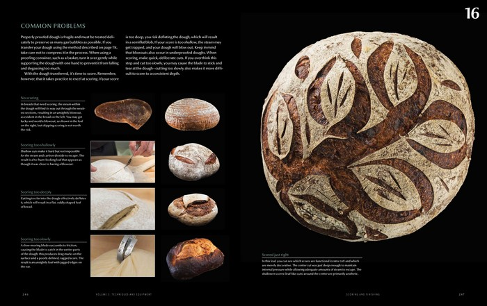 modernist cuisine bread pdf download