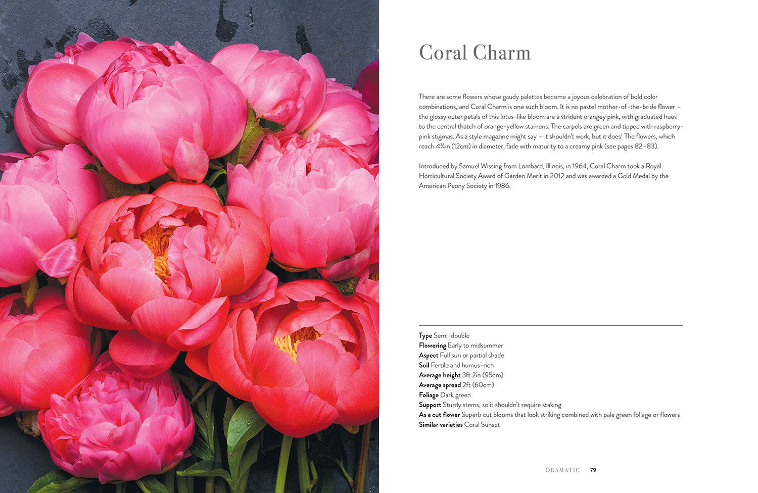 Peonies, Beautiful Varieties for Home and Garden by Jane