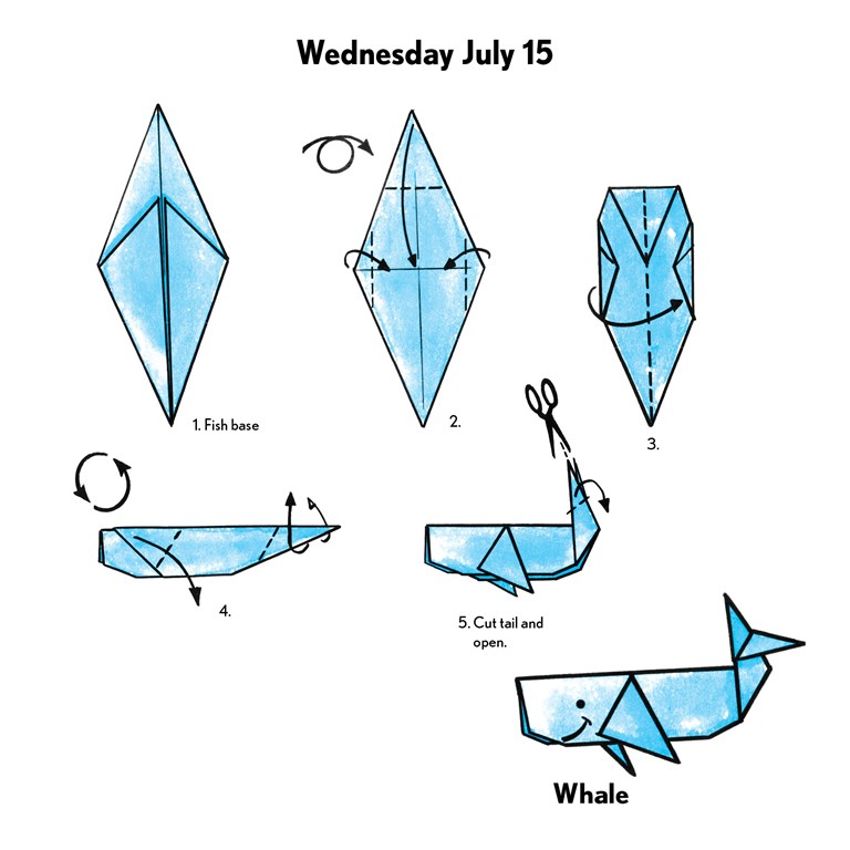 How to Make an Easy Origami Shark | 768x768