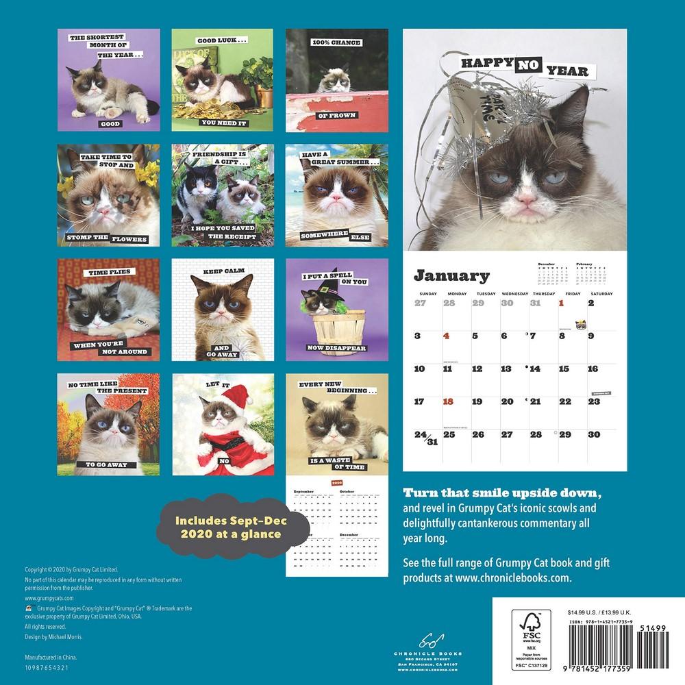 Grumpy Cat Calendar 2022.Grumpy Cat 2021 Wall Calendar By Grumpy Cat 9781452177359 Booktopia