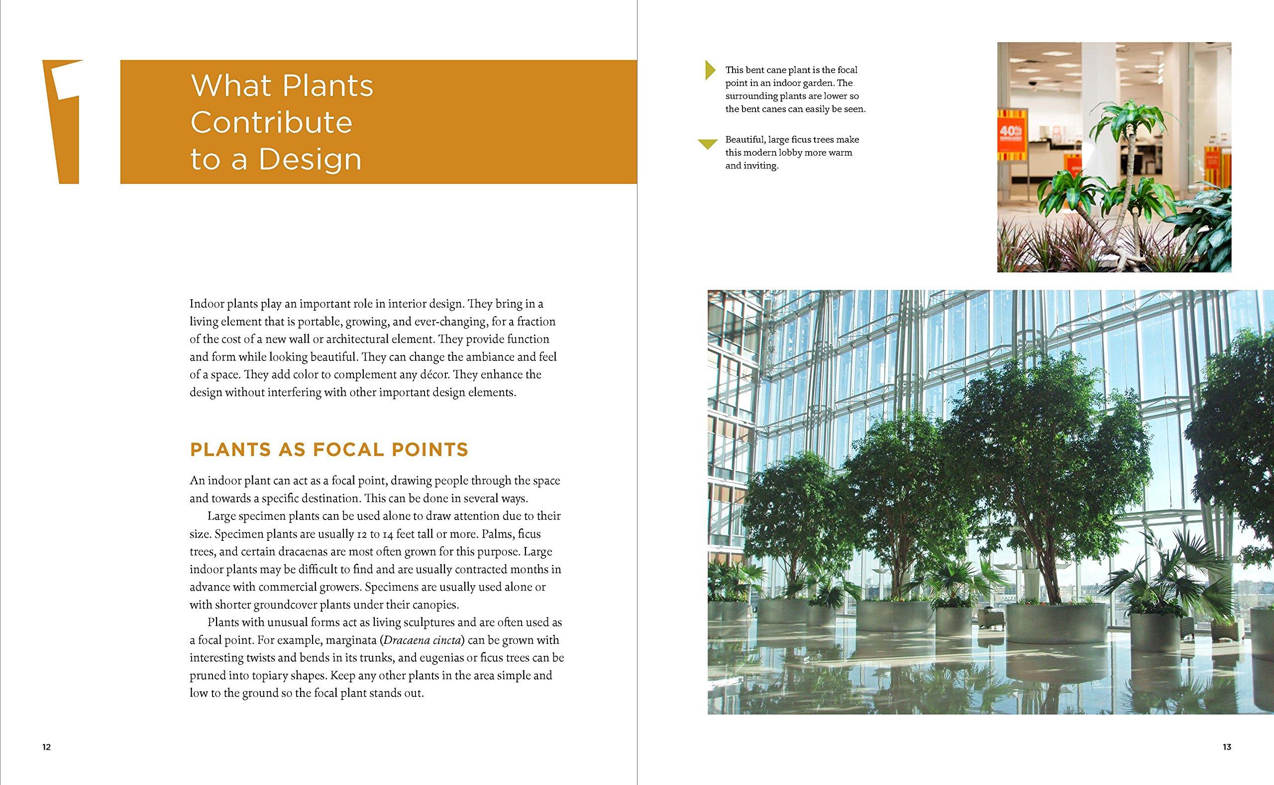 The Manual of Interior Plantscaping, A Guide to Design, Installation