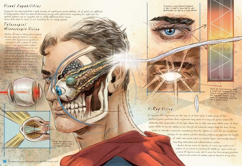 Anatomy Of a Metahuman - DC Comics by S D  Perry
