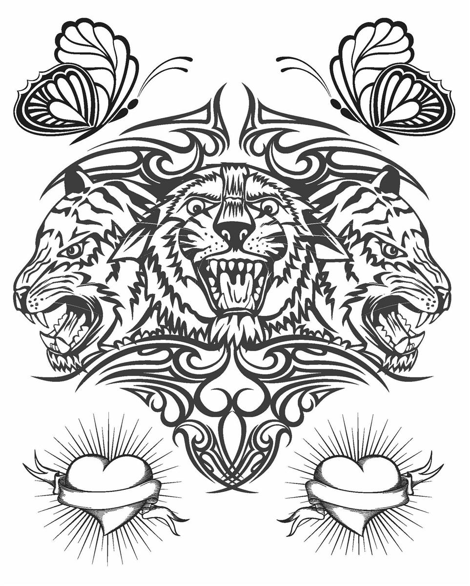 booktopia tattoo colouring book adult colouring books 9781743524572 buy this book online - The Tattoo Coloring Book