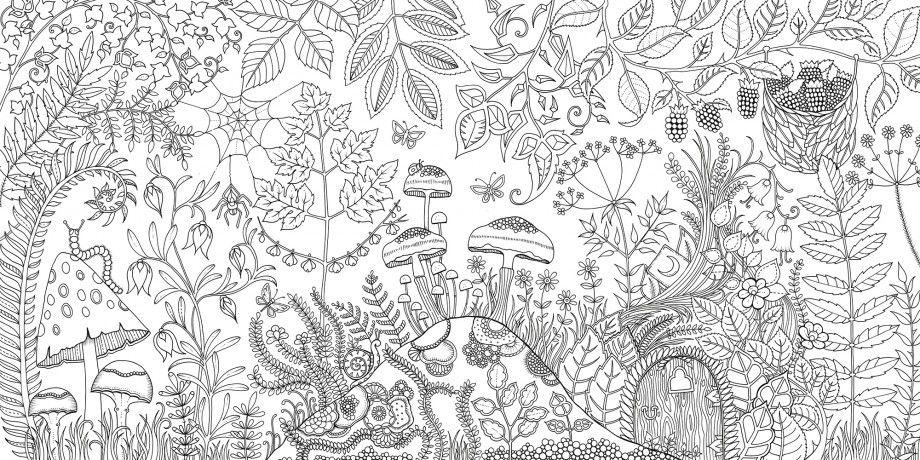 The Enchanted Forest by Johanna Basford Colouring Book Flipthrough ... | 460x920