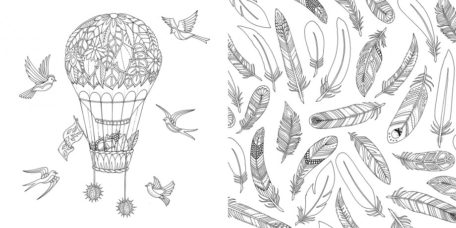 Enchanted Forest An Inky Quest Colouring Book By Johanna Basford