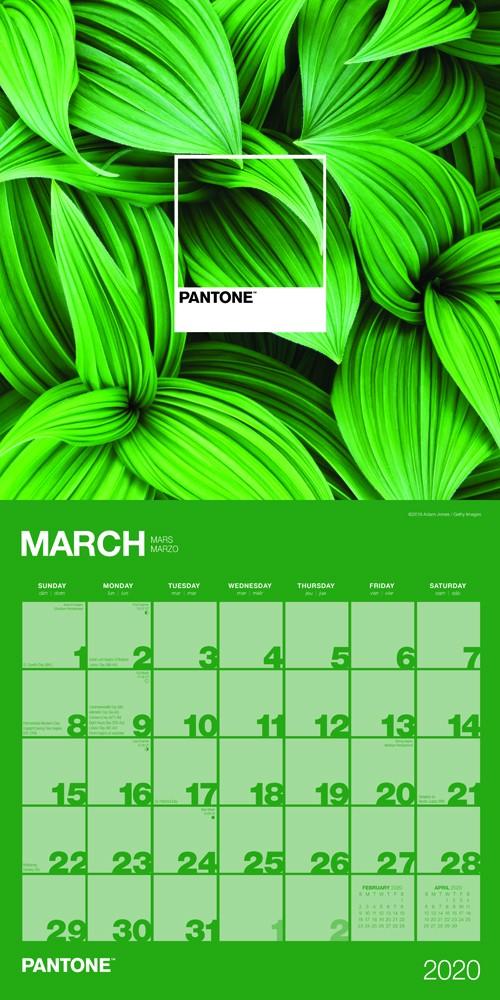 Calendario 2020 16.Pantone 2020 Calendar By Browntrout Publishing